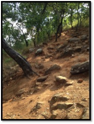 One of the steep hills I had to climb